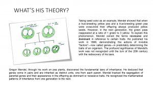 Gregor Mendel_page-0003