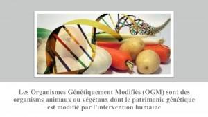 Les génes_page-0004
